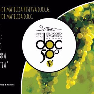 Enopress Tasting: Provima and the Matelica's Verdicchio