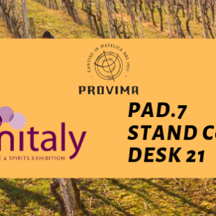 Vinitaly 2019 – come and taste Verdicchio di Matelica DOC