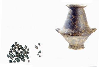 I vinaccioli fossili ritrovati a Matelica nella tomba picena di Villa Clara (VII-VI sec. a.C.)