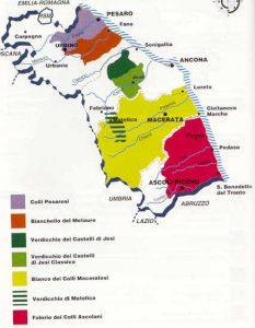 Mappa di alcuni vini DOC della Regione Marche